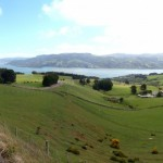 cycling on otago peninsula