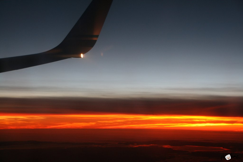 Flying Sunset