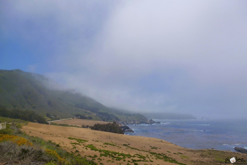 Mist on the Californian Coast