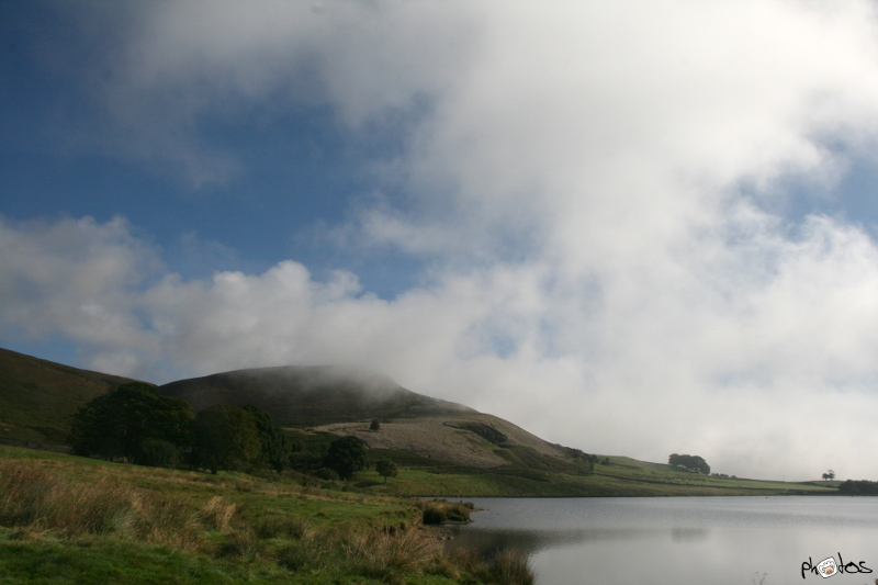 embsay res