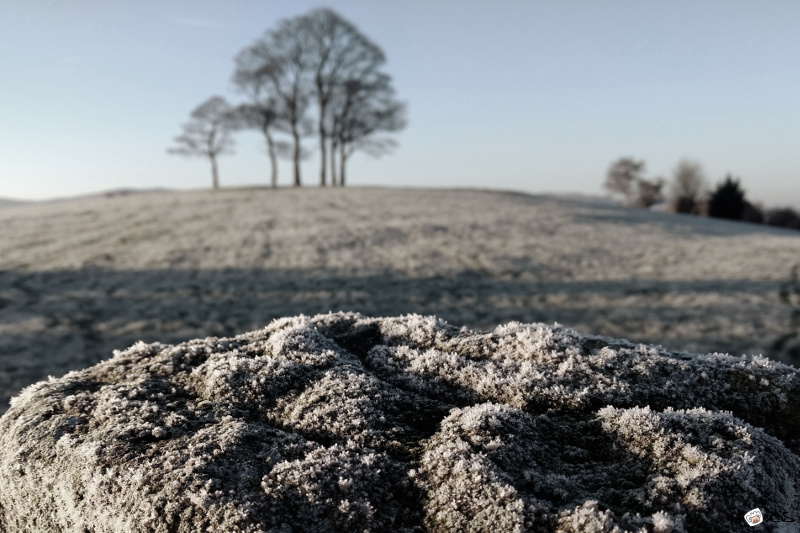 frosty stone