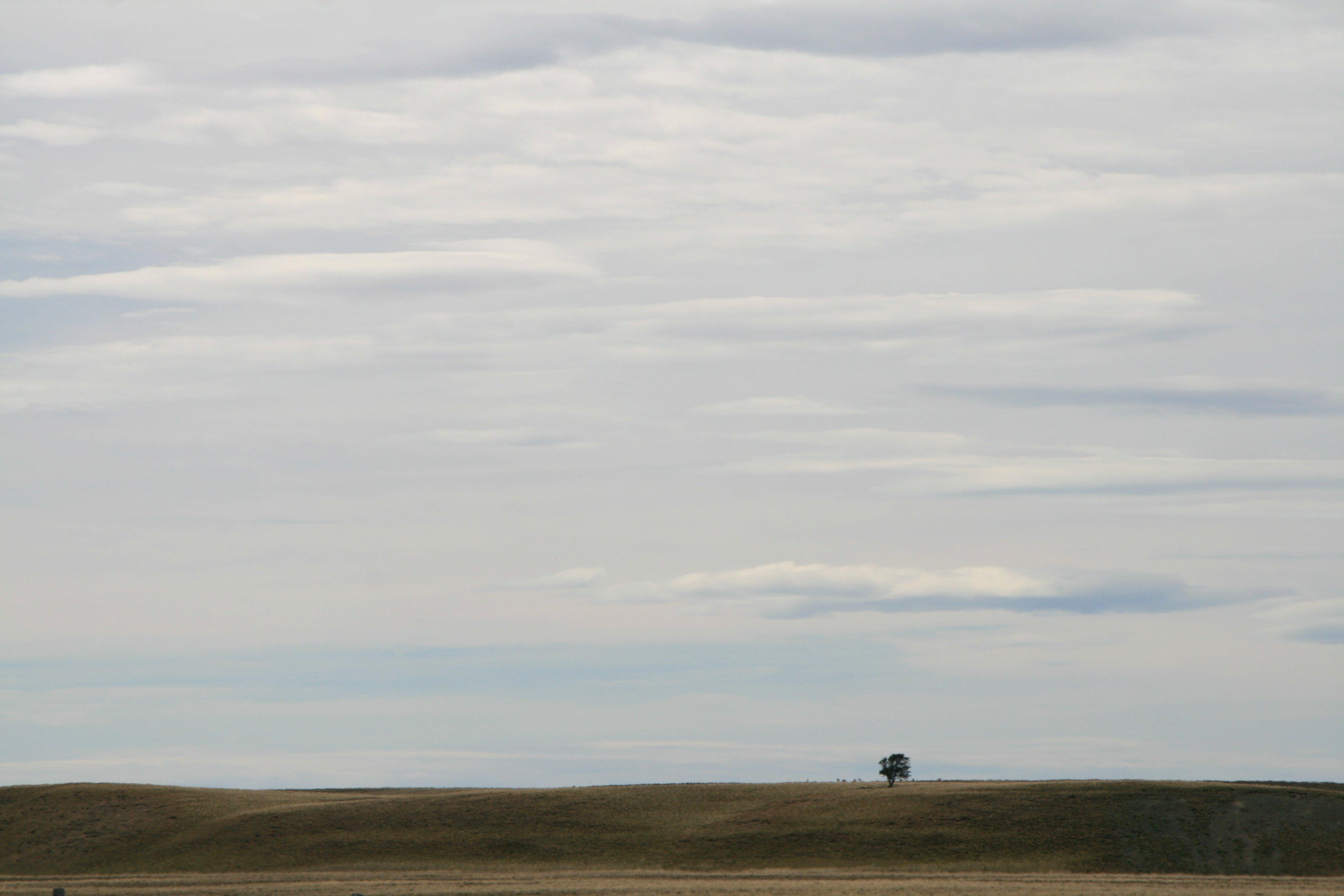 All alone in Tierra del Feugo