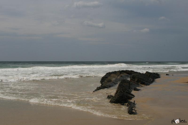 Beach on Tasmania