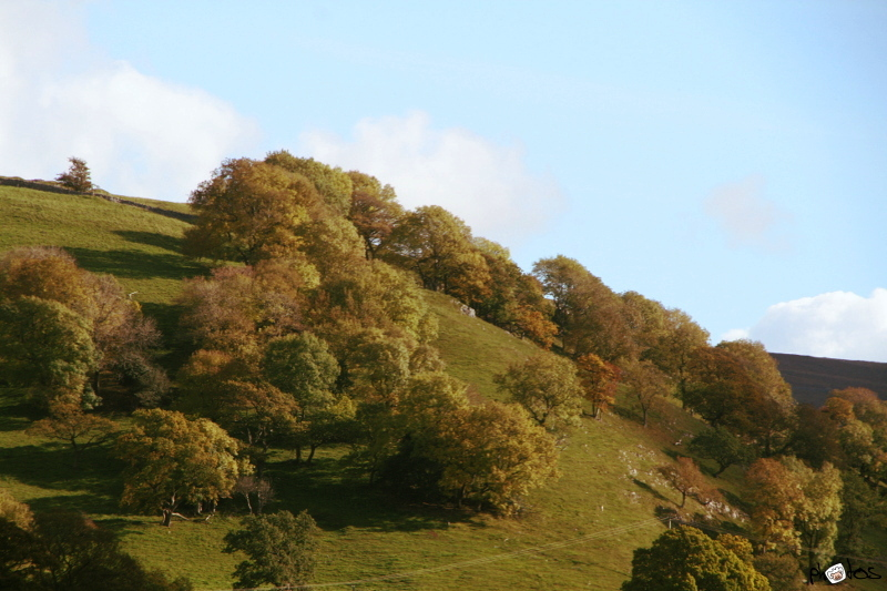 hill in sun