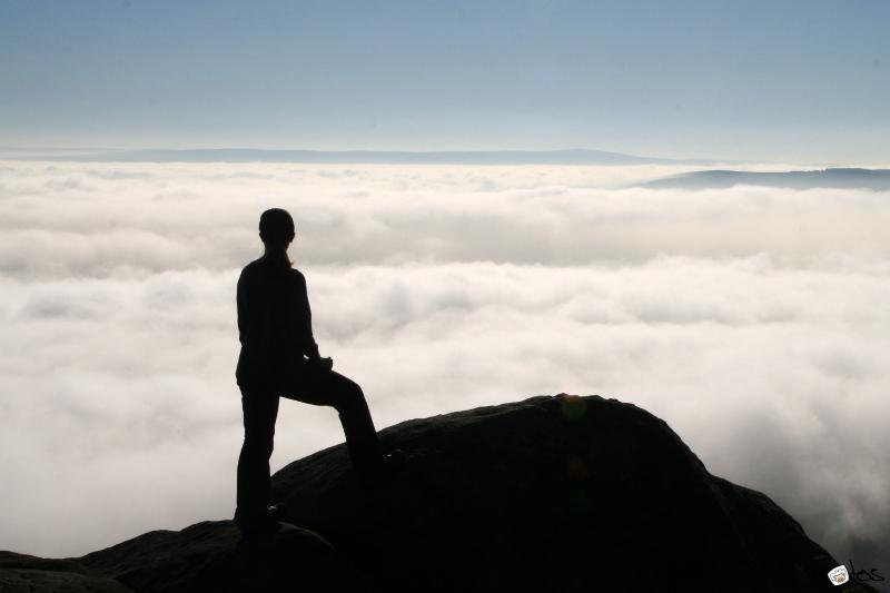 above the fog
